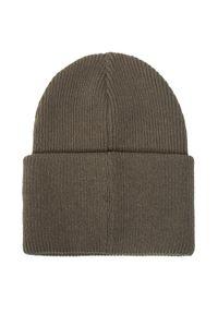 Zielona czapka zimowa Didriksons