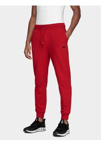 Spodnie dresowe 4f