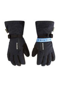 Dakine - Rękawice narciarskie DAKINE - Sequoia Glove GORE-TEX 10003173 Black. Kolor: czarny. Materiał: poliester, guma, materiał