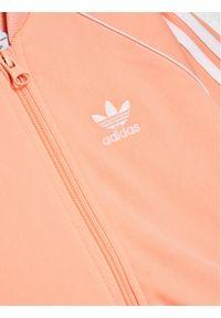 Pomarańczowy dres Adidas