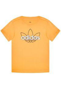 Pomarańczowy t-shirt Adidas