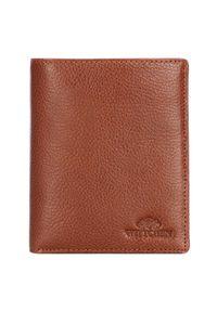 Wittchen - Męski portfel ze skóry prosty. Kolor: brązowy. Materiał: skóra