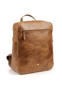 Skórzany męski plecak DAAG Jazzy Wanted 99 brąz. Kolor: brązowy. Materiał: skóra