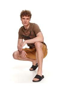 TOP SECRET - T-shirt męski z nadrukiem. Kolor: brązowy. Materiał: tkanina, bawełna. Długość rękawa: krótki rękaw. Długość: krótkie. Wzór: nadruk. Sezon: lato. Styl: wakacyjny, klasyczny