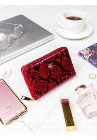 Czerwony portfel MILANO DESIGN z motywem zwierzęcym