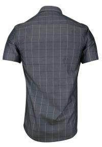 Szara elegancka koszula Rey Jay z krótkim rękawem, w kratkę