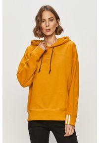 adidas Originals - Bluza. Okazja: na co dzień. Kolor: żółty. Styl: casual
