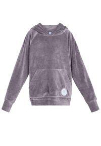 ROBERT KUPISZ - Szara bluza z logo Kids Velvet. Typ kołnierza: kaptur. Kolor: szary. Materiał: tkanina. Wzór: aplikacja