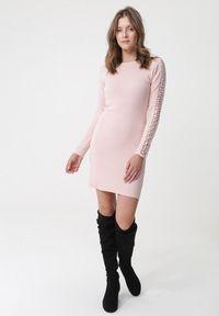 Born2be - Jasnoróżowa Sukienka Lugarno. Kolor: różowy. Materiał: dzianina, materiał. Długość rękawa: długi rękaw. Wzór: prążki, aplikacja. Sezon: jesień, zima. Typ sukienki: dopasowane. Długość: mini