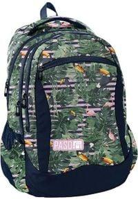 Paso Plecak szkolny zielony (PPMS19-2808). Kolor: zielony