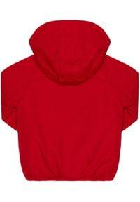 Guess Kurtka zimowa N0YL04 WDGC0 Czerwony Regular Fit. Kolor: czerwony. Sezon: zima