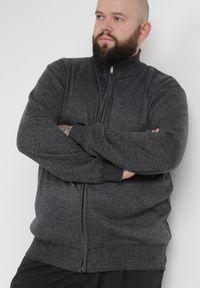 Born2be - Ciemnoszary Sweter Z Wełną Asoania. Typ kołnierza: golf. Kolekcja: plus size. Kolor: szary. Materiał: wełna. Długość rękawa: długi rękaw. Długość: długie