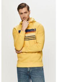 s.Oliver - s. Oliver - Bluza. Okazja: na co dzień. Typ kołnierza: kaptur. Kolor: żółty. Wzór: nadruk. Styl: casual