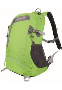 Husky plecak turystyczny Stingy 28L zielony. Kolor: zielony