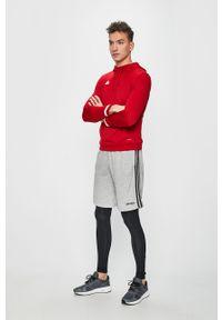 Czerwona bluza nierozpinana adidas Performance na co dzień, z kapturem, z aplikacjami