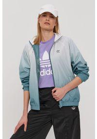 Zielona kurtka adidas Originals gładkie, casualowa, bez kaptura