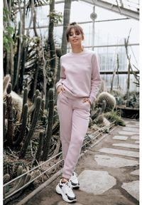 Susan Sport x Kuba Wojewódzki - Pudrowo różowe spodnie dresowe Susan Sport. Kolor: różowy. Materiał: dresówka
