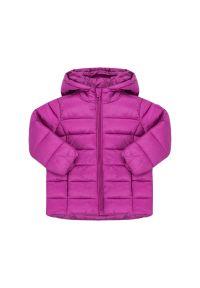 Fioletowa kurtka zimowa Primigi