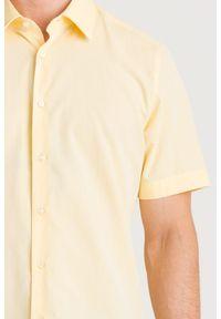 Koszula Joop! Collection casualowa, na co dzień, na lato