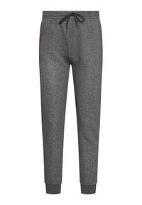 Szare spodnie dresowe Lacoste