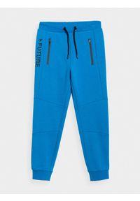 Niebieskie spodnie dresowe 4f na co dzień
