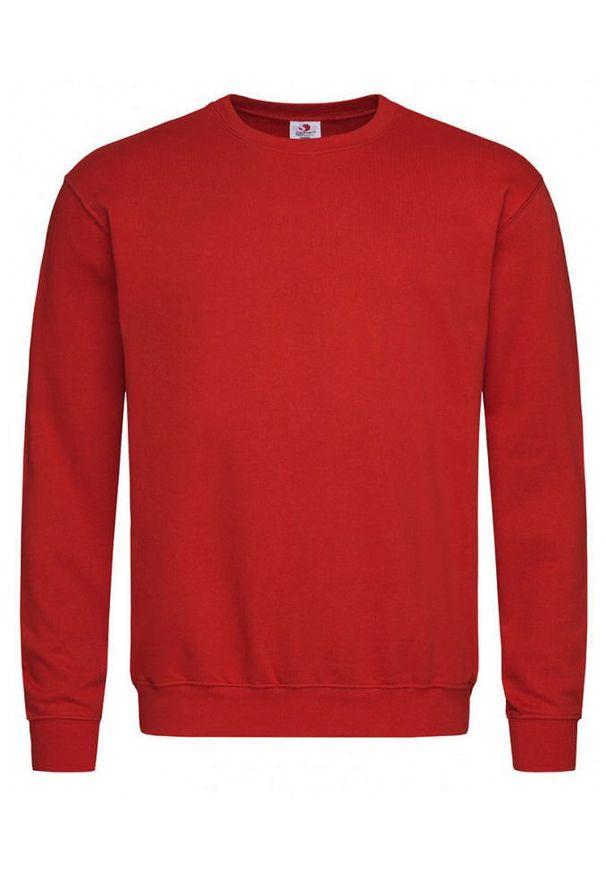 Czerwony sweter Stedman z okrągłym kołnierzem, klasyczny
