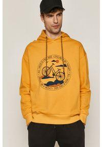 medicine - Medicine - Bluza Retro Cool. Okazja: na co dzień. Kolor: żółty. Wzór: nadruk. Styl: retro
