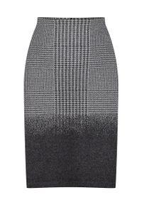 Spódnica Greenpoint z nadrukiem #1