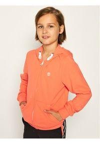Pomarańczowa bluza Timberland